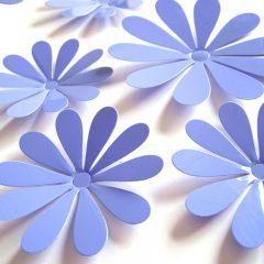3D Flower Set Move